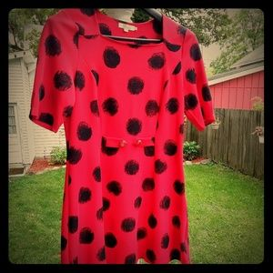 Polka Dot Minidress